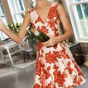 Eva Franco Rose Relief Dress - SZ 6
